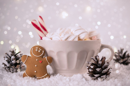 Winter hot drink, cacao with marshmallows and gingerbread man cookies, spicy hot chocolate festive vintage background
