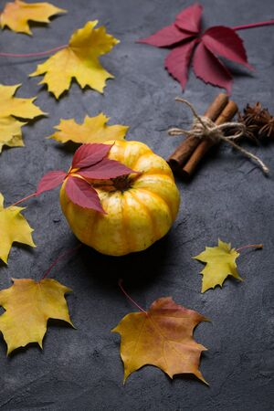 Pumpkin, cinnamon, star anise. Ingredients for making autumn pumpkin drink on a dark background with colorful leaves. Place for text