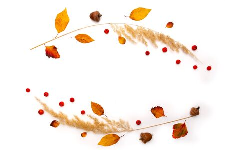 Frame of dried natural autumn grass, yellow leaves and red rowan berries on white background. Copy space. Flat lay.