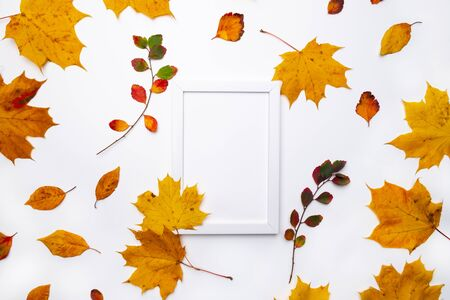 Frame made of beautiful autumn dried leaves on white background. Fall concept. Autumn background. Flat lay, top view, copy space Stockfoto