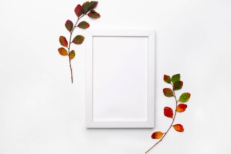 Branch of autumn leaves isolated on a white background. Flat lay. Copy space for seasonal promotions and discounts