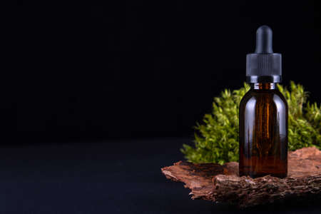 Forest border backdrop. Concept for natural eco organic bio cosmetic beauty product flat lay, top view
