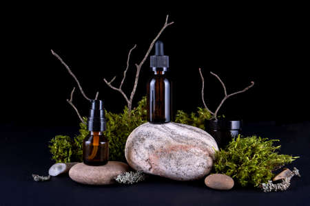 Abstract background with bark tree podiums for products presentation or exhibitions. Concept for natural eco organic bio cosmetic beauty product with copy space Фото со стока