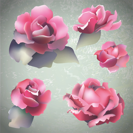 artnouveau: set of five realistic vector roses  european  art-nouveau sculpture style