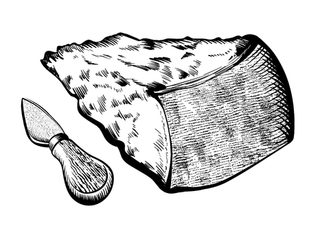 Parmesan cheese with knife Illustration