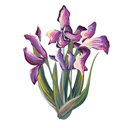 brushed: Iris bouquet