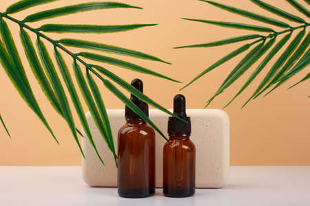 Two skin serum in dark bottles against beige podium and beige background with palm leaves.