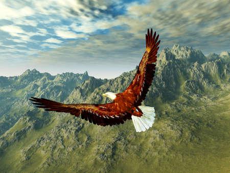 eagle canyon: eagle in the mountains