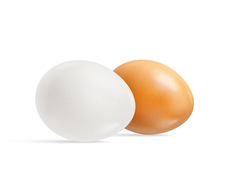 Two fresh raw chicken eggs, white and brown isolated on white background. Realistic vector 3d illustration. Mock up for patterns for feast of Easter. For creation of design templates labels, packaging