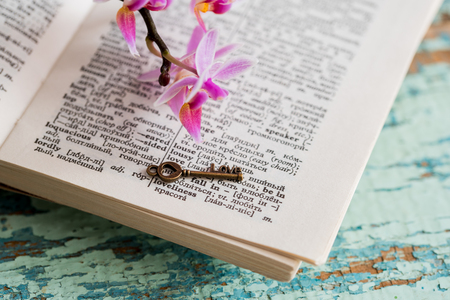 Dictionary page with word love in focus and other is defocused. The key with the heart, the symbol of Valentines Day. Pink orchid flower on an old goby green wooden background Stock Photo