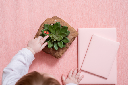 The hand of the little baby. A cute baby. Pink notebook, cactus succulent on a pink Stock Photo