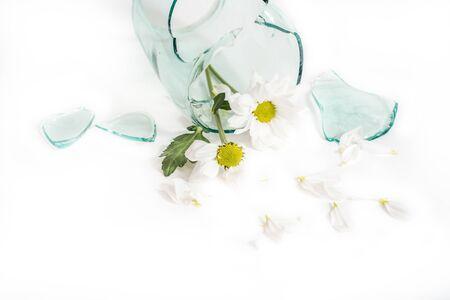Glasscherben, eine Blume in einer zerbrochenen Vase. Das Konzept von unglücklicher Liebe, Trauer und Tränen Standard-Bild