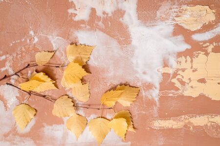 Dry autumn yellow birch leaves on a concrete background. Cozy autumn concept Flat lay. copy space.