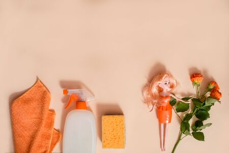 Home Cleaning tools and flower on pastel colored 写真素材
