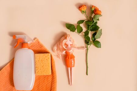 Home Cleaning tools and flower on pastel colored Banque d'images