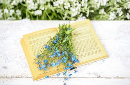 Open vintage book, blue forget-me-not flowers on wooden table, cozy morning in the village, sunny summer, holidays.Book of Batanica. Standard-Bild