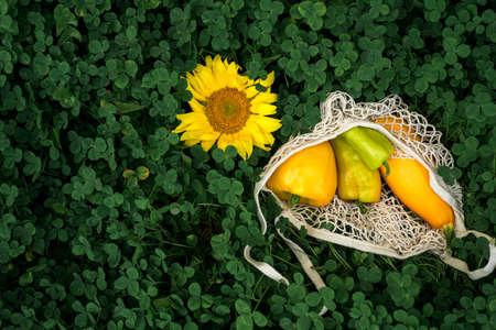 Summer vegetables. Yellow sunflower, bell peppers, pumpkin. Green grass of clover. Farmers Autumn Harvest.Eco packaging, string bag.