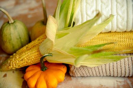 autumn corn on yellow knitted sweater . Cozy autumn atmospheric image. Happy Thanksgiving Reklamní fotografie
