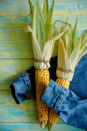 Hand hugs a bouquet of corn cobs, denim jacket, top view.