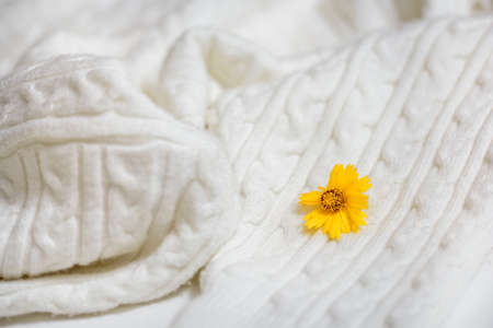 White Knitted Fabric Texture.Knitting, handmade.Yellow autumn leaf.