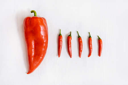 Red sweet and hot peppers on a white background. Fat people concept.