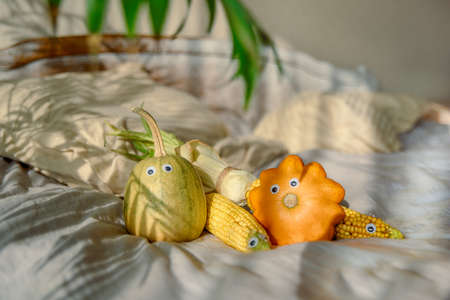 toys made from chestnuts and natural materials - autumnal toys Reklamní fotografie