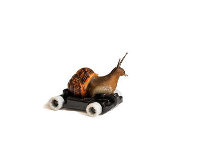 Speedy snail on wheels, driving, isolated on white background