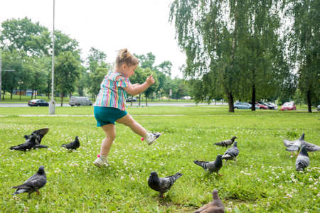 A little girl runs for pigeons.Baby Girl Chasing Pigeons In Outdoors City Park. cheerful happy childhood, runs laughing and screaming.