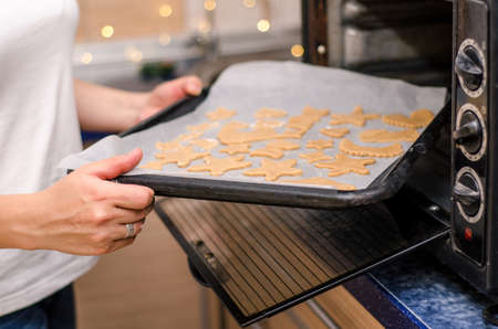 Female hands put a baking sheet with raw ginger Christmas cookies in the oven