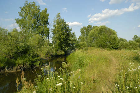 clearing the path: Path and river