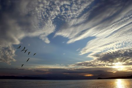 Birds fly off subsequent to sundown sun Stock Photo