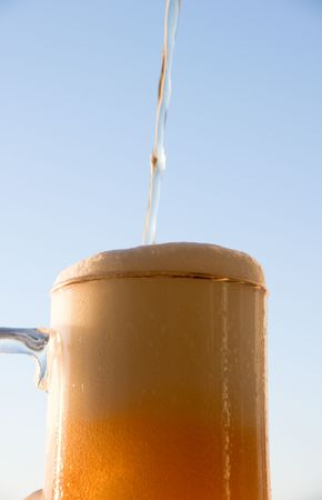 spume: Spume in mug with beer