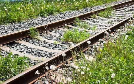 onward: railway track leading far onward with flowering dandelion