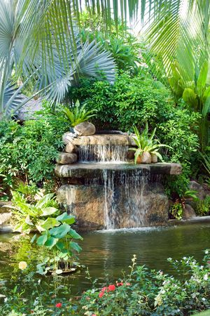 water feature: small waterfall in tropical garden