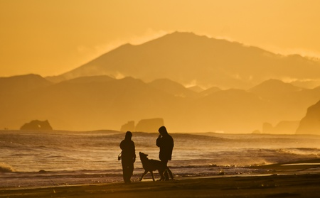 silhouettes of the men, woman and dog walking on oceanside Stock Photo - 9097054