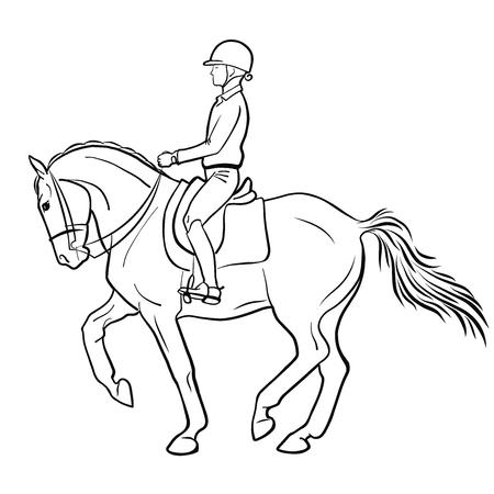Uno scetch vettoriale di un cavaliere di dressage su un cavallo