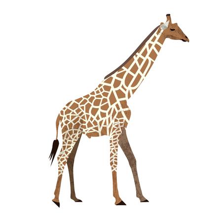 Cute cartoon trendy design little giraffe with closed eyes. African animal wildlife vector illustration icon. Illustration