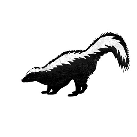 Skunk in flat style isolated on white background. Vector illustration. Forest animal. Vettoriali