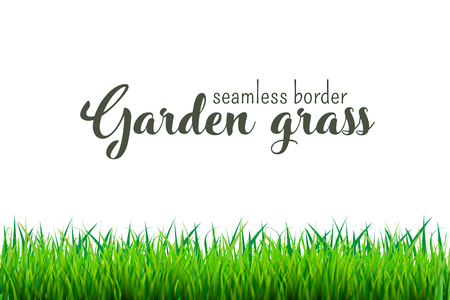 Green grass seamless border isolated on white background. Vector illustration  イラスト・ベクター素材