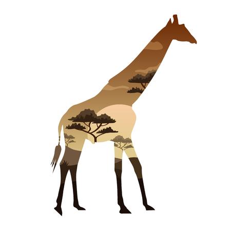 Vector illustration Double exposure. Giraffe wildlife concept Illustration