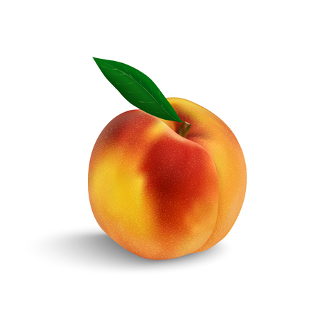 peach with leaf isolated on white background, vector illustration