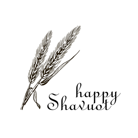 Happy Shavuot poster with wheat illustration Vettoriali