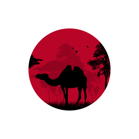 Silhouette of a camel in the desert 向量圖像
