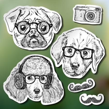 안경 소식통 강아지의 빈티지 그림 스톡 콘텐츠 - 26545171