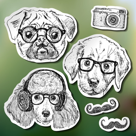 pug puppy: Vintage illustration of hipster puppy with glasses