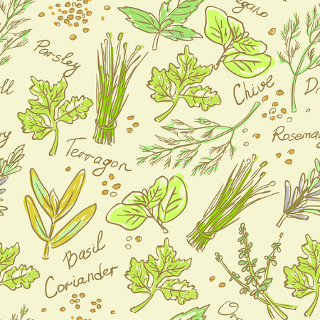 Seamless Pattern Herbs set, vector hand drawn illustration