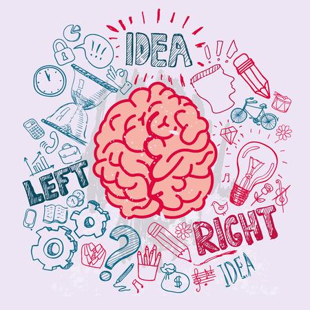 anatomy brain: Sinistra e funzioni cerebrali destro