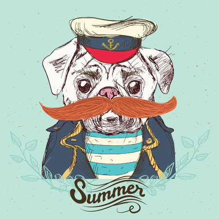 Illustration of pirate pug dog on blue background in vector