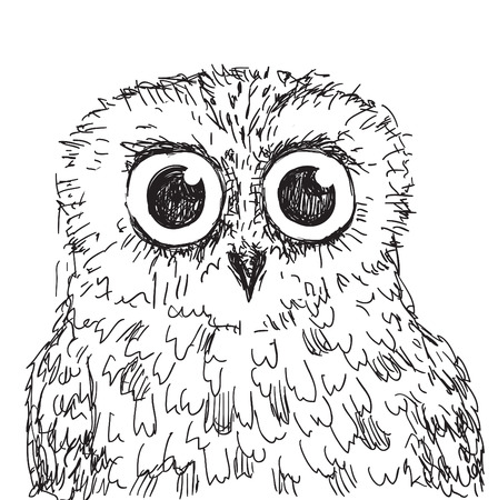 wise old owl: stock vector hand drawn owl illustration. vector illusrtration hand drawn Illustration