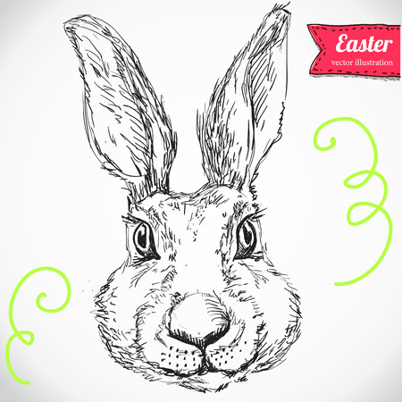 Hand Drawn Vector Portrait of Bunny  and Tuxedo, Party Look